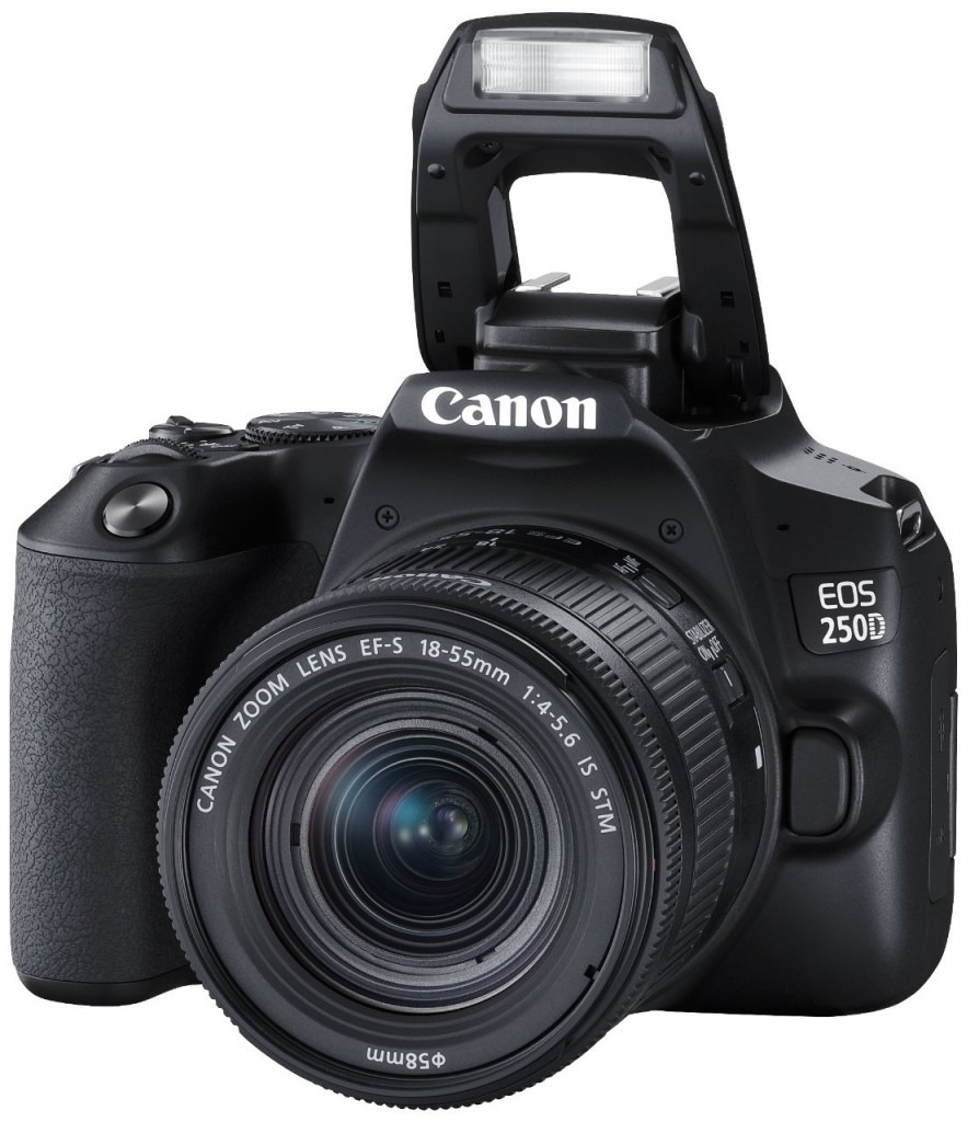 Canon EOS 250D - легкая камера с поворотным экраном